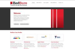 RedSure Consulting
